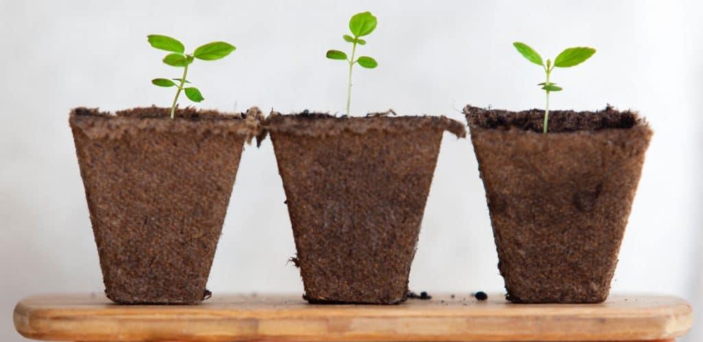 print-on-demand-tools-to-grow