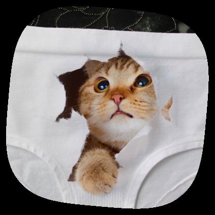 custom panties