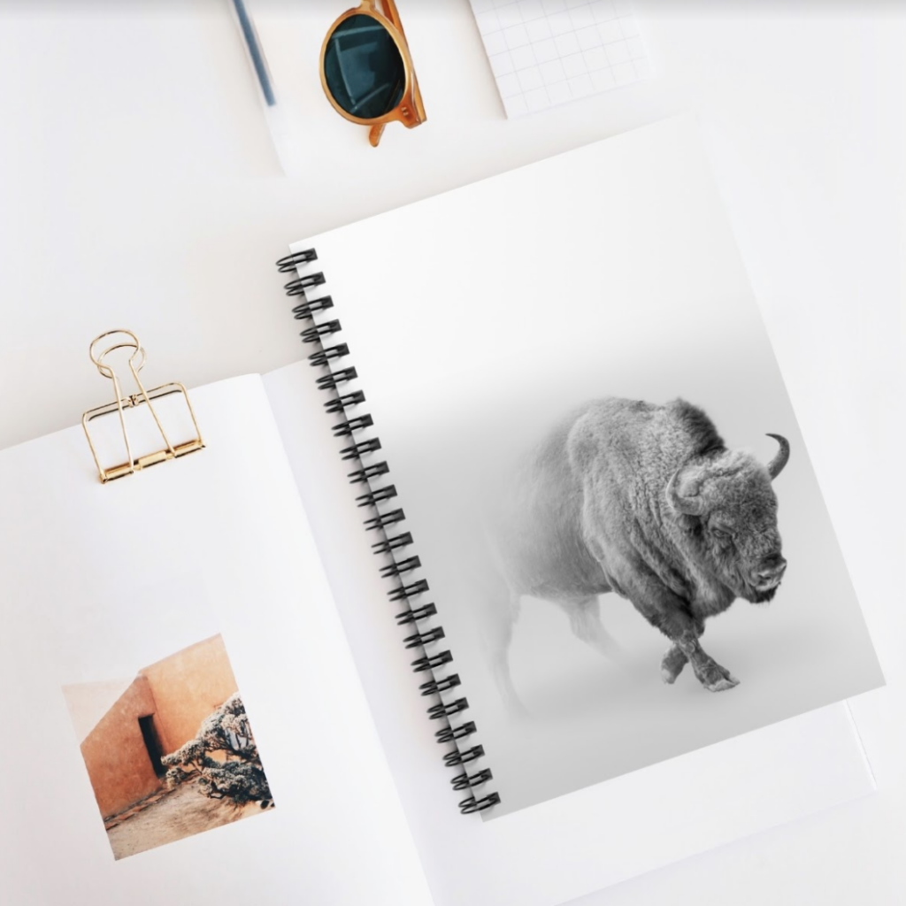 photography on a notebook