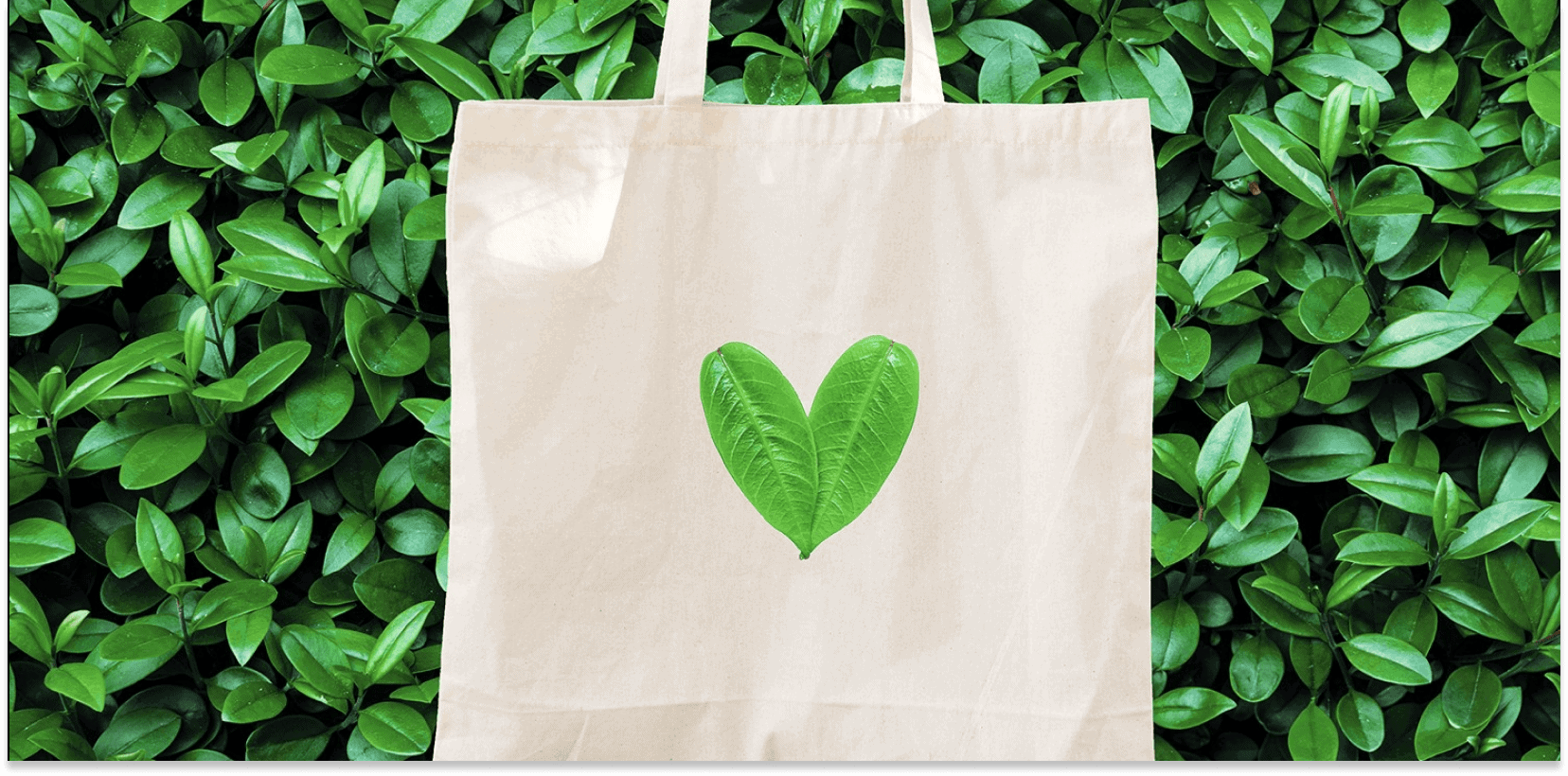 Green consumerism: people are willing to pay more for green