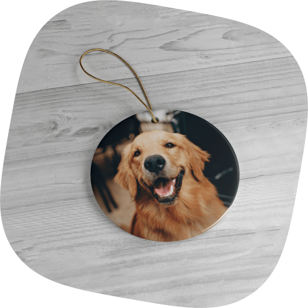 personalized Christmas ornaments with pets