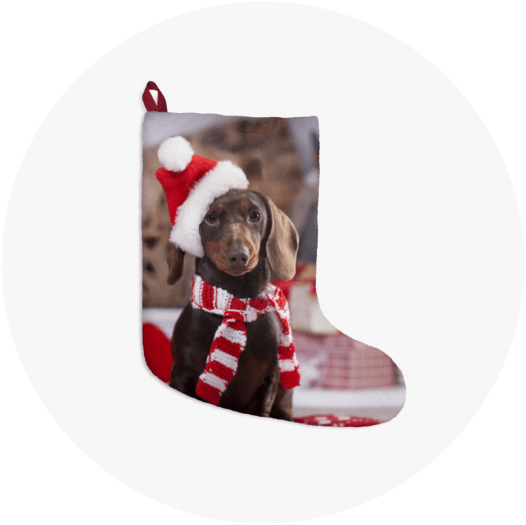 Personalized Christmas Stockings Dashund
