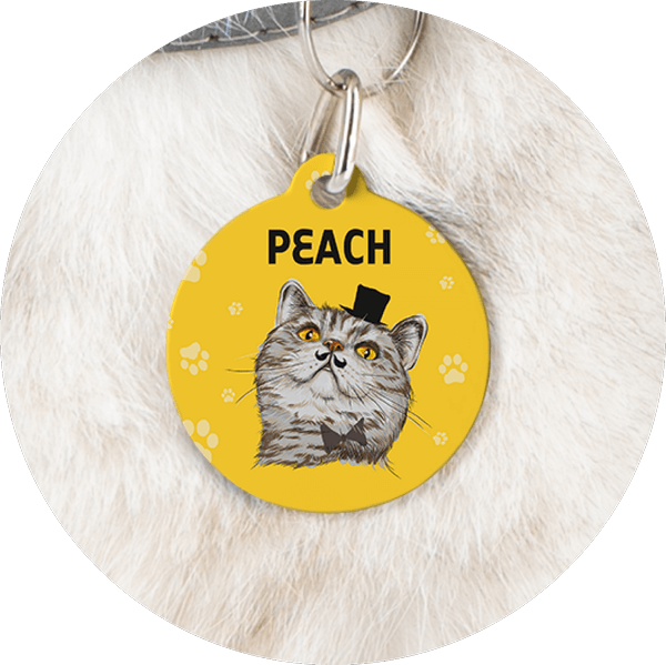 Custom Pet Tags Cat Name