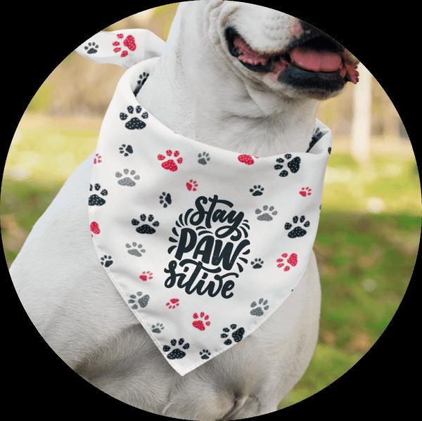 Personalized Custom Dog Bandanas Funny Puns