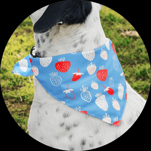 Personalized Custom Dog Bandanas Playful Pattern