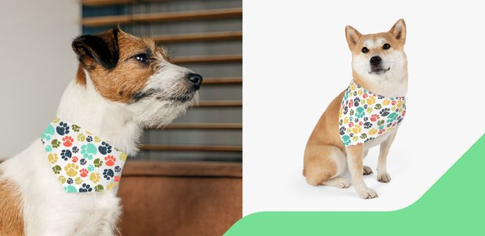 Personalized Pet Products Pet Bandana Collars