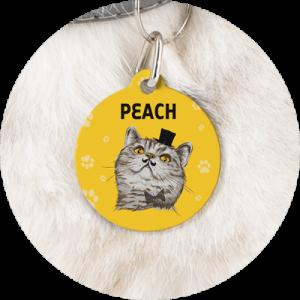 Custom Pet Tags Cat Name