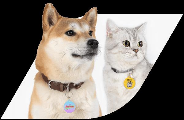 Custom Pet Tags