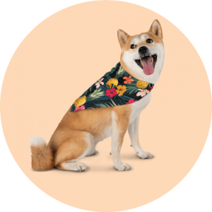 20 Print-on-Demand travel accessories for your online store - Pet bandana