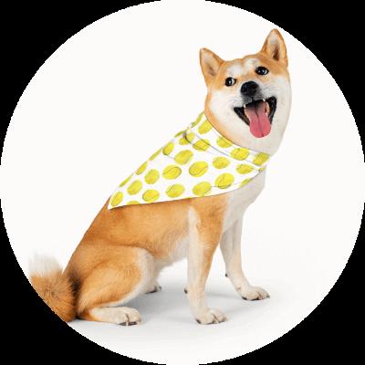 Summer Product Ideas Pet bandana